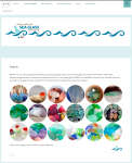 North American Sea Glass Association website by Windlass Creative