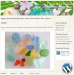 Tropical Sea Glass website design by Windlass Creative