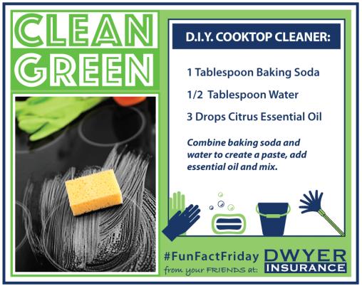 CleanGreen-CooktopCleaner